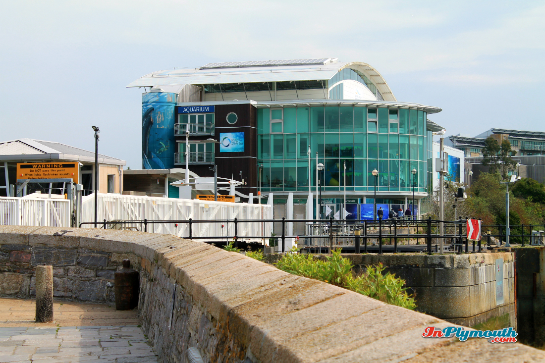 The National Marine Aquarium, Plymouth Barbican