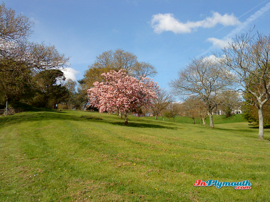 Central Park, Plymouth