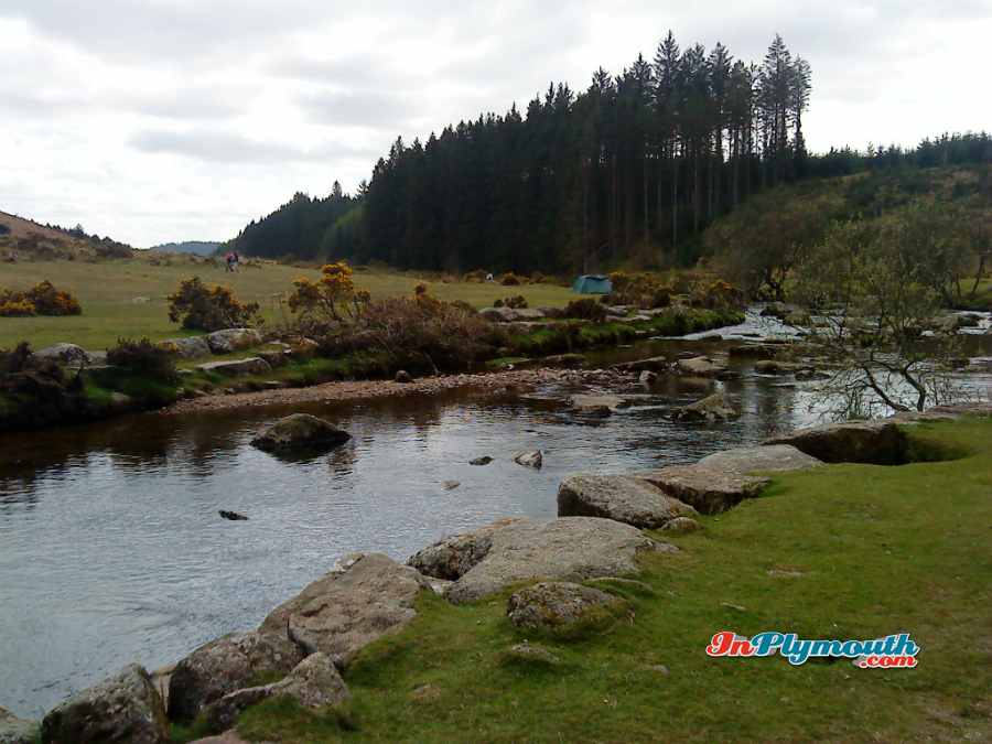 Bellever Forest is owned by the Forestry Commission and is one of Dartmoor's gems.