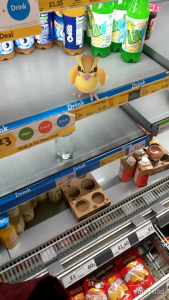 Pokemon can be found in shops