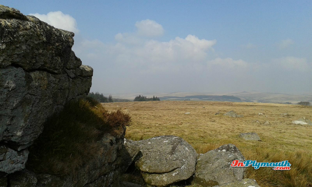 Looking northwards from South Hessary Tor March 2015